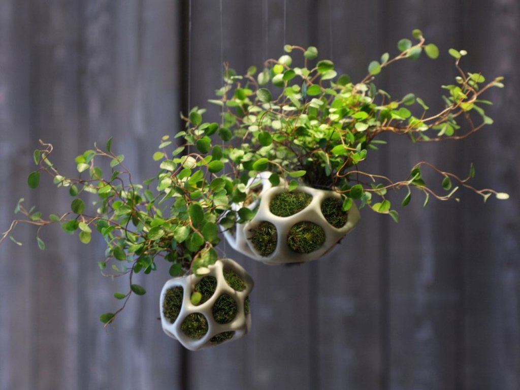 Cella Planters by Ecoid