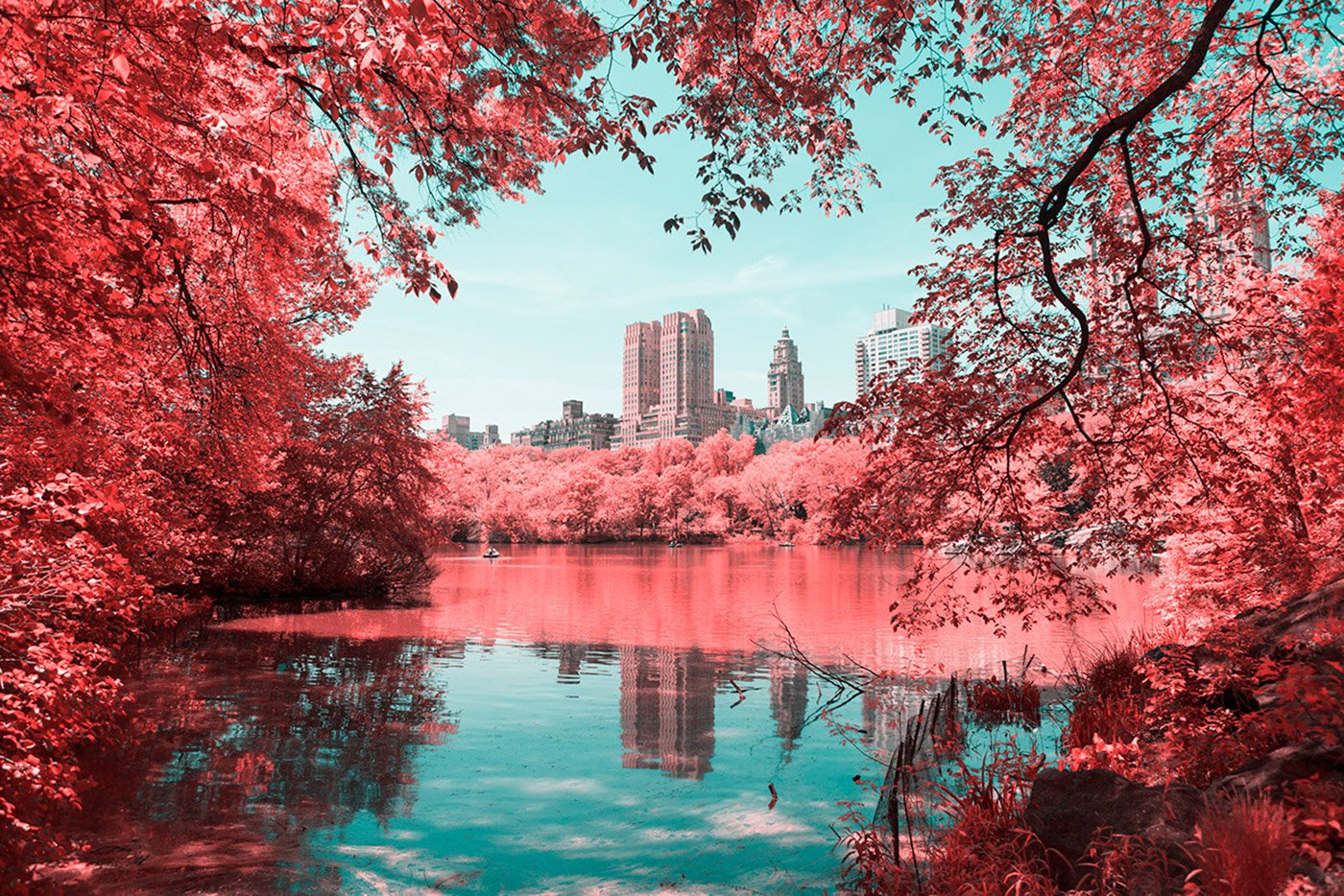 infrared_photography_nyc_central_park_paolo_pettigiani_gessato_5