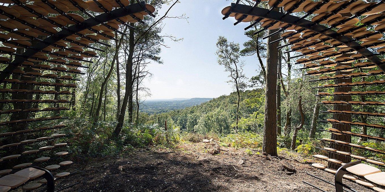 organic-cedar-wood-pavilion-giles-miller-10